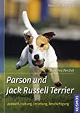 hunderassen jack russell terrier russell terrier akc. Black Bedroom Furniture Sets. Home Design Ideas