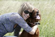 hundevermittlung-online