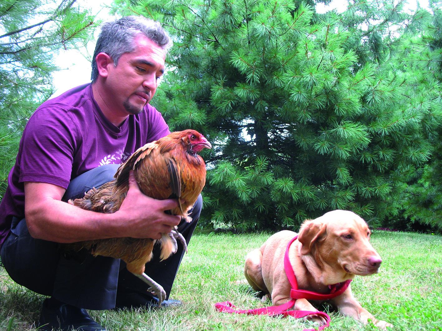 Dog Trainer Tv Show Usa
